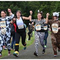WIDNES WASPS CHAMPIONSHIP - 10M RACE - Kirkby Milers Safari 10